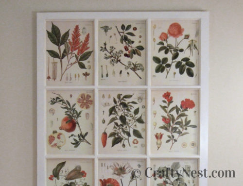 Window frame + free botanical illustrations = DIY art