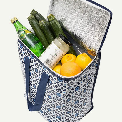 Insulated grocery bag with groceries, photo