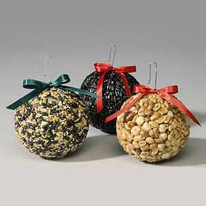 Round birdseed balls, photo