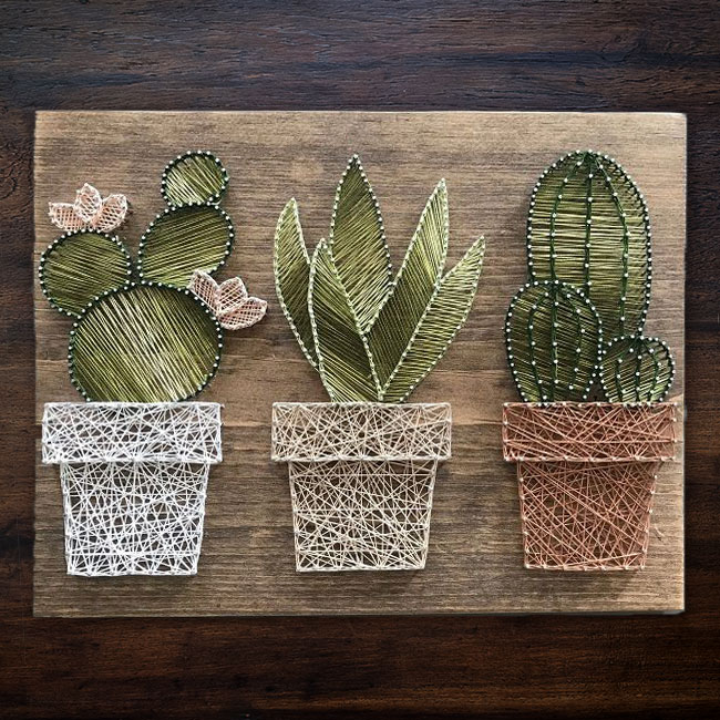 Cactus string art, photo