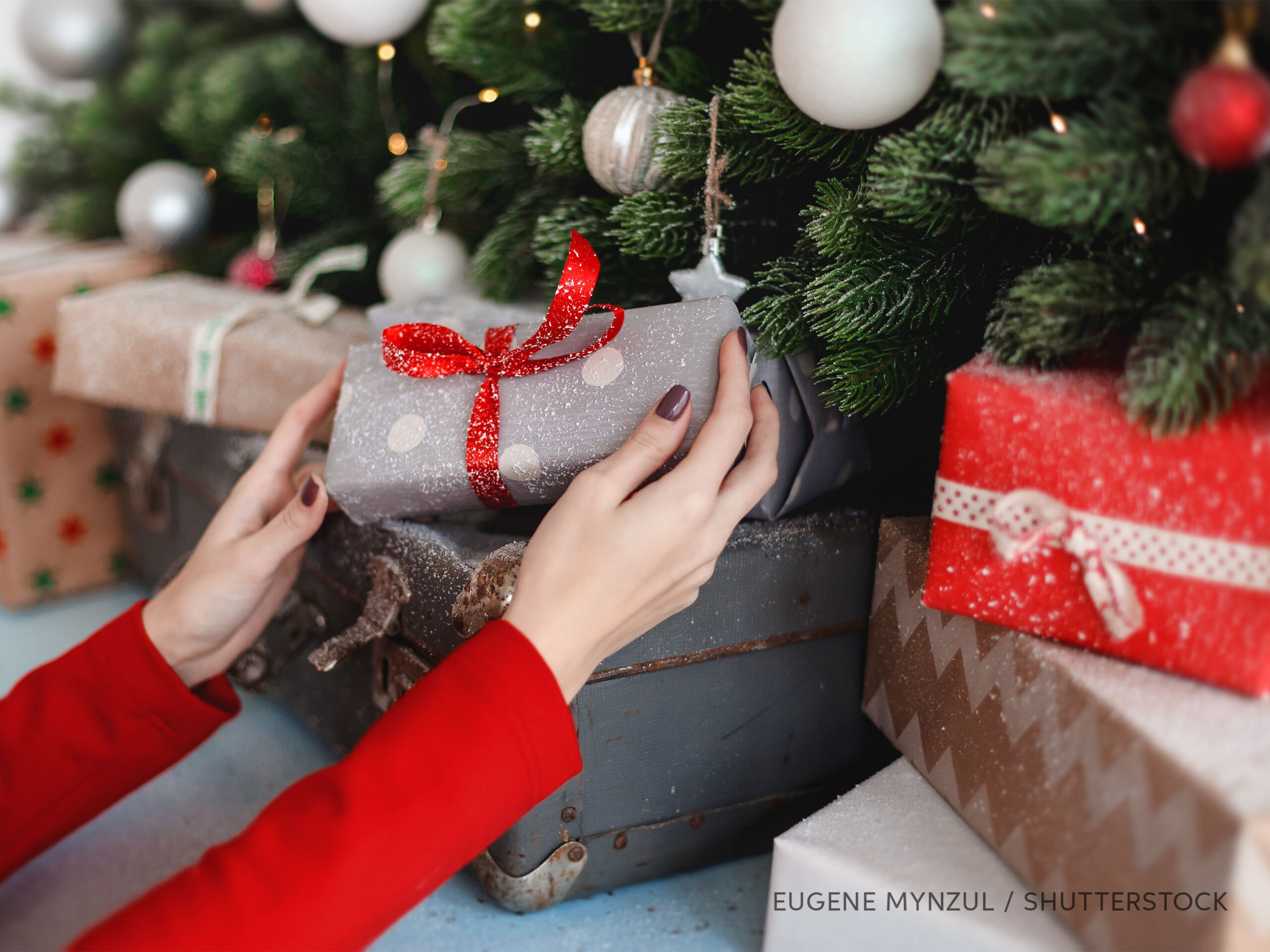 Presents under a Christmas tree, photo